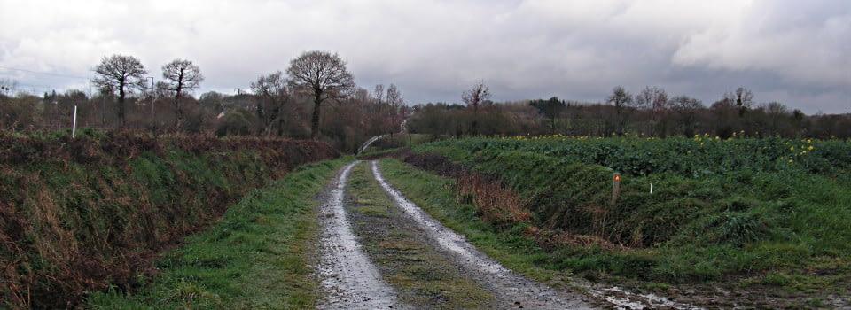 chemin corniere
