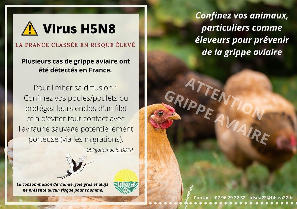 L'influenza aviaire (Mesures de Biosécurité)