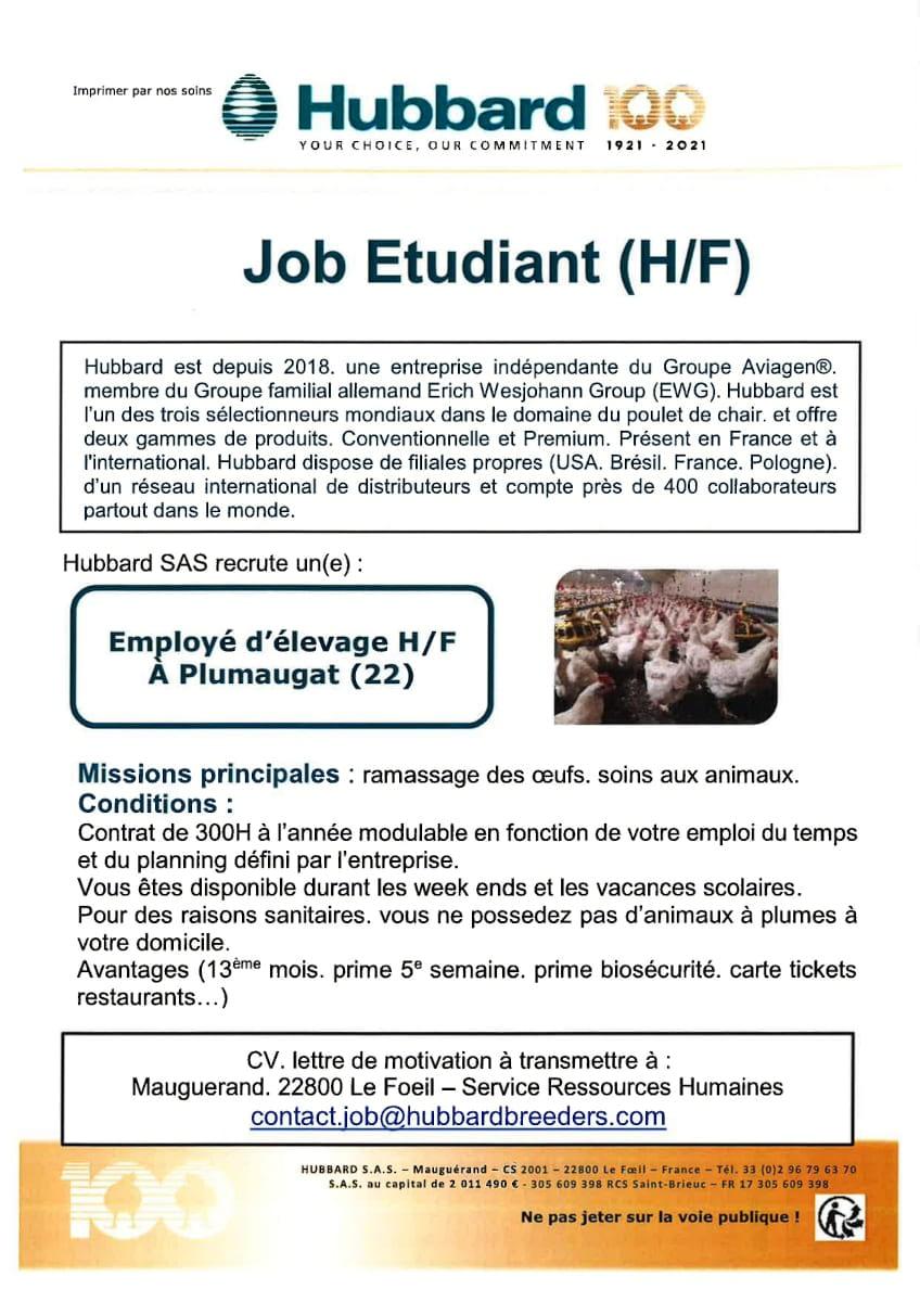 Read more about the article Job Etudiant / Employé d'élevage (H/F)
